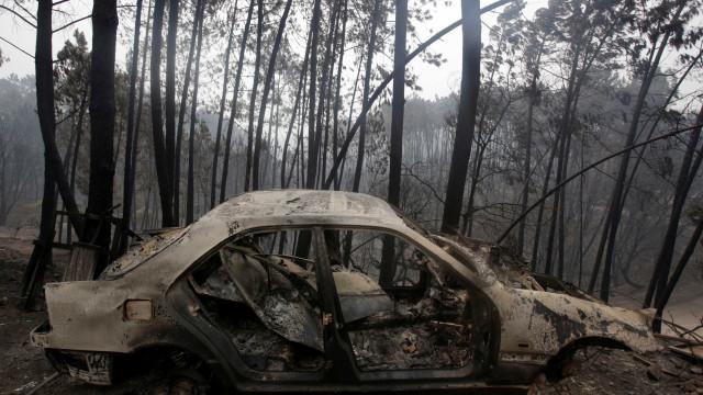 """Incêndios: Regime de isenção à Segurança Social """"está parado"""""""