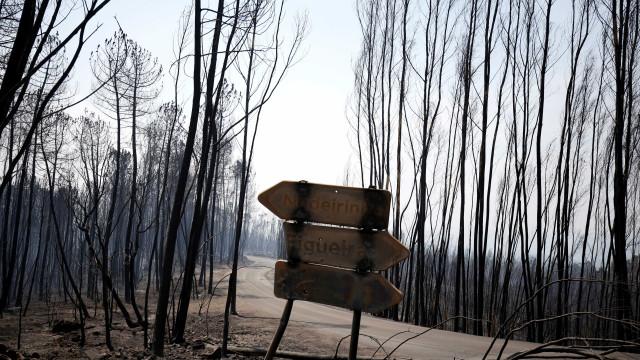 Cinco feridos de fogos de Pedrógão Grande ainda hospitalizados