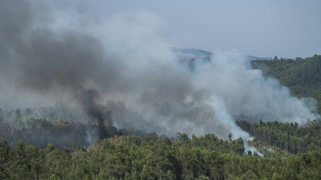 Nove concelhos de cinco distritos do país em risco máximo de incêndio