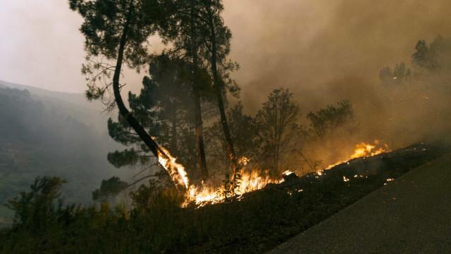 Incêndio já está no perímetro da vila de Monchique