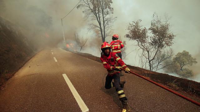 Incêndios 'protagonistas' de mais de um quinto da informação televisiva