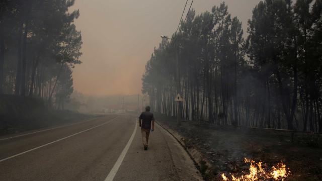 Os grandes fogos da região Centro em números