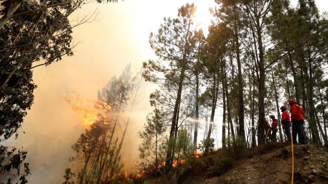 """Jornal espanhol pergunta: """"Quem ganha dinheiro quando arde em Portugal?"""""""