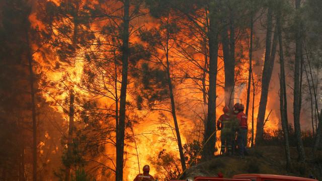 Proteção Civil avisa a população para perigo de incêndio rural