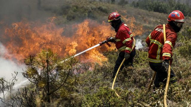 Cerca de 300 bombeiros combatem fogo em Aldeia do Mato, Abrantes
