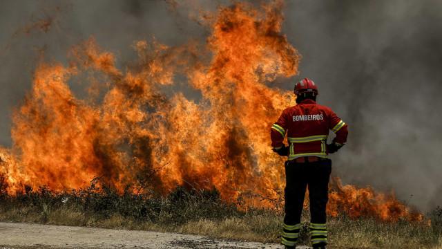 Fogo em Grândola obriga ao corte da linha ferroviária do Sul