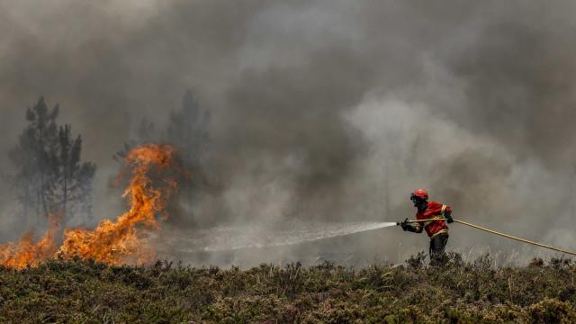 Cinco bombeiros feridos após acidente durante combate às chamas em Aveiro