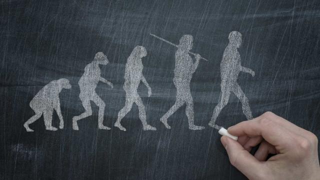 Teoria da evolução removida de manuais escolares turcos