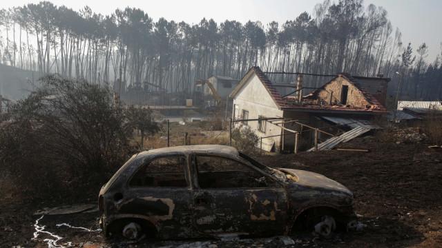 """Incêndios: Empresário """"plantou bombeiros"""" para proteger propriedade"""