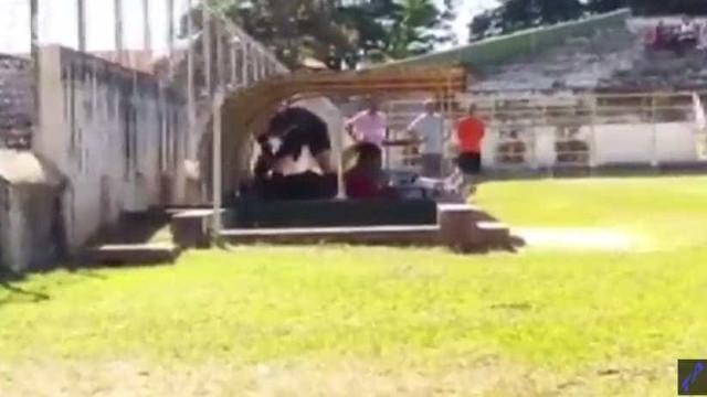 Brasil: Árbitro agredido pegou em arma e jogo foi suspenso