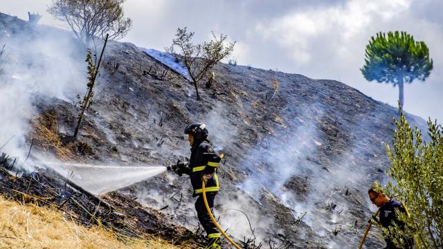 Fogo que lavrava desde domingo em Louriçal do Campo foi dominado