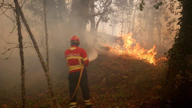 Bombeiros combatem chamas em Caminha há mais de três horas