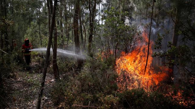 Fogo em Malhadal, Proença-a-Nova, foi dominado