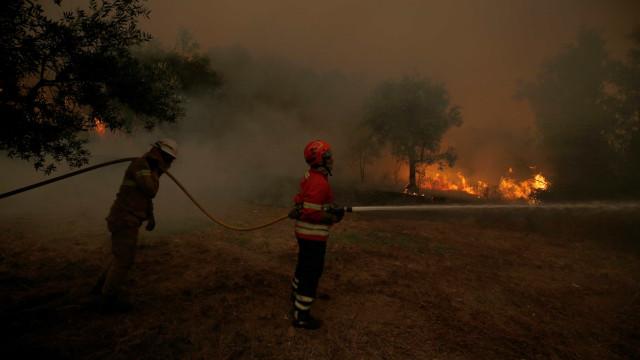Detida suspeita de atear fogo florestal em Mesão Frio
