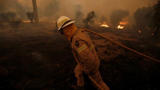 Incêndios em Castelo Branco: EN2 reaberta, só uma estrada cortada