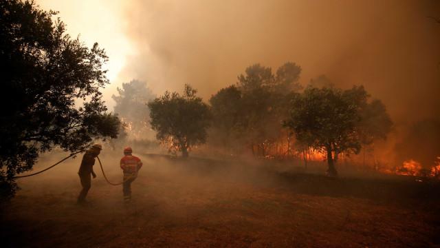 Incêndios: Mais de 30 concelhos estão hoje em risco máximo