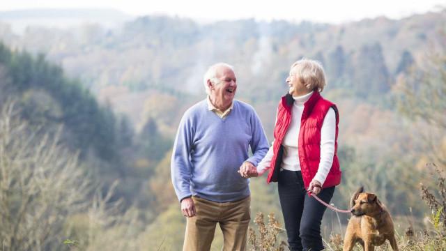 Ter um cão pode ajudar idosos a ser mais saudáveis e ativos