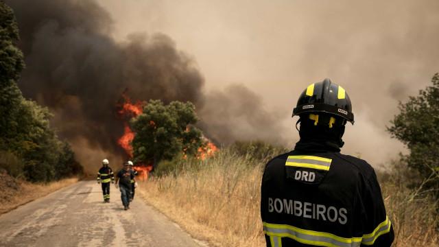 Oito incêndios ativos, 11 feridos, centenas de operacionais no terreno