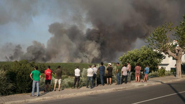 Numa aldeia de Mação, o fogo ajuda a alimentar o abandono da terra