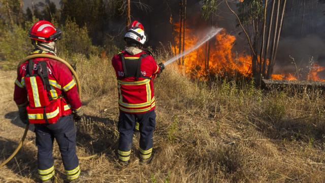 Mais de 70 homens e três meios aéreos combatem fogo no distrito de Braga