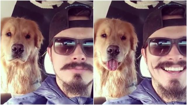 'Tal cão, tal dono', eis a prova de que pode ser mesmo verdade