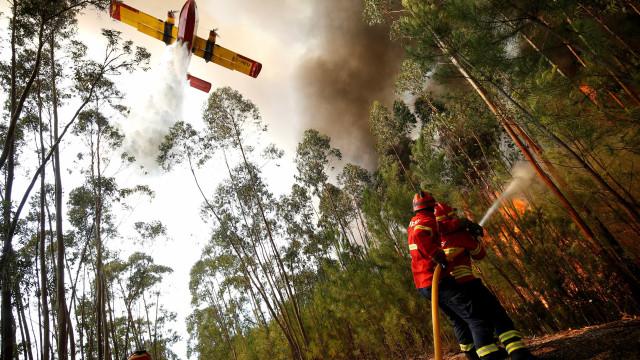 Mais de 100 bombeiros no combate a fogo que lavra em Sesimbra