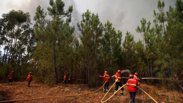 Fogo em Sesimbra não coloca habitações nem zona de praia em risco