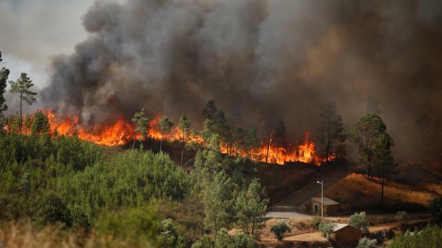 Mais de 40 concelhos de sete distritos em risco máximo de incêndio