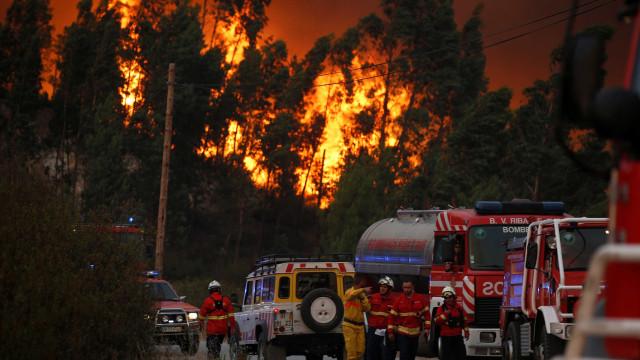Arderam 118 mil hectares e foram detidas 71 pessoas desde o início do ano