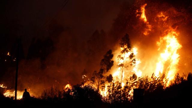 Incêndio lavra em Sintra na zona do convento da Peninha