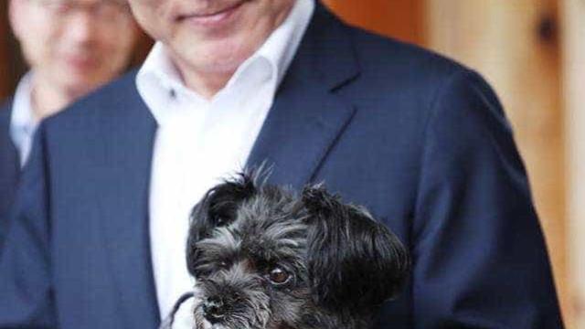 Presidente da Coreia do Sul adota cão que podia ser abatido