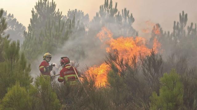 Casas devolutas arderam na aldeia de Louriceira em Mação