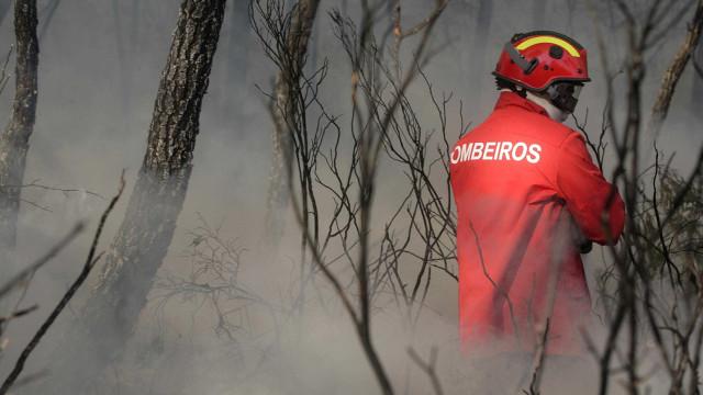 Mais de 60 concelhos em risco máximo de incêndio no interior e Algarve