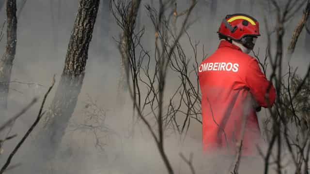 Afinal, o que se passa na Associação Portuguesa de Bombeiros Voluntários?