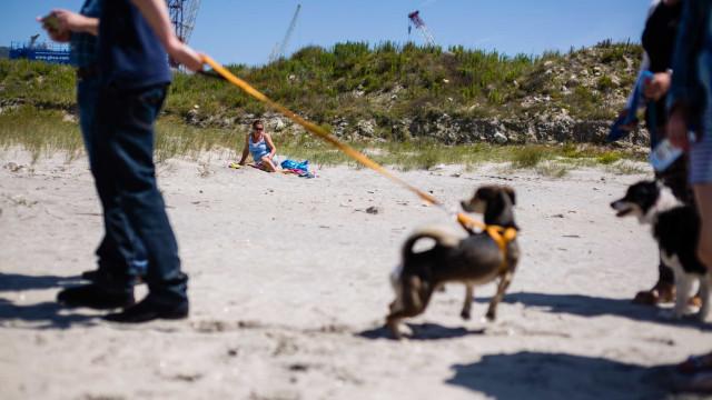 Praia dos Cães, inaugurada há um ano, continua a atrair turistas