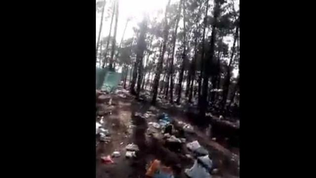 """Lixo após Meo Sudoeste: """"Deviam ensinar nas escolas um pouco de civismo"""""""