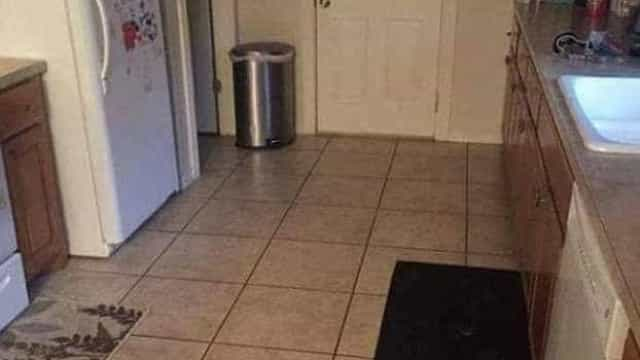 Consegue encontrar o cão nesta foto? Avisamos que não é fácil