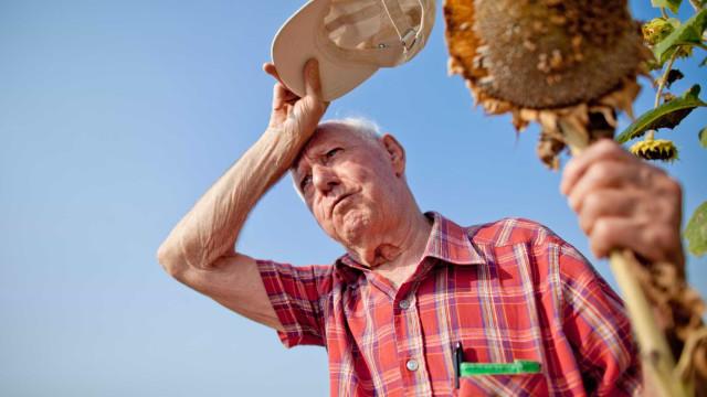 Sinais de alerta e conselhos para proteger idosos de ondas de calor