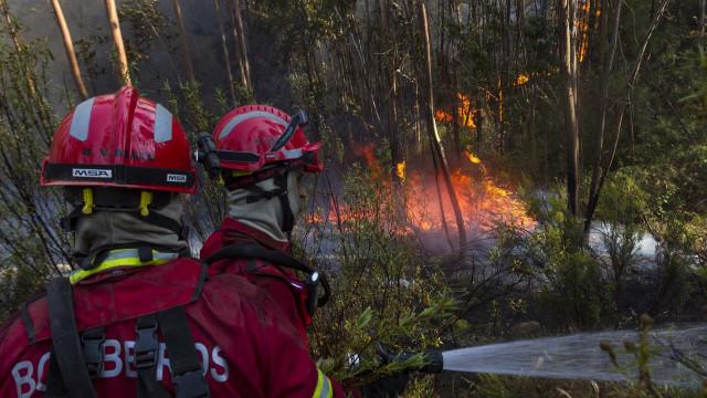 Duas frentes de fogo continuam por controlar em Abrantes