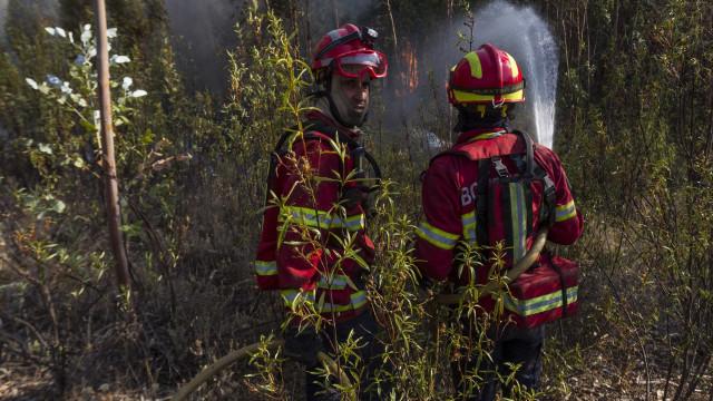 A14 e A3 cortadas devido aos incêndios