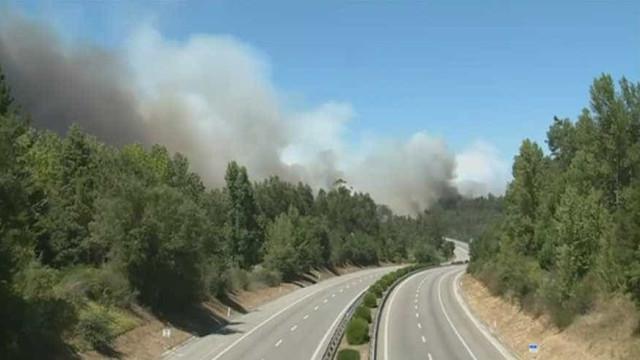 A1 cortada nos dois sentidos na zona da Mealhada devido a incêndio