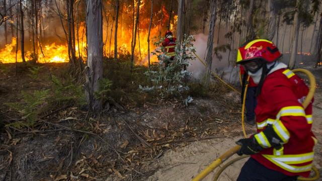 """""""Incêndio já está dentro da cidade de Abrantes"""""""