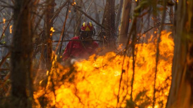 Três pessoas detidas e nove identificadas devido a incêndio florestal