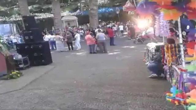 Queda de árvore na Madeira foi transmitida em direto no Facebook