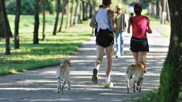 Uma dúzia de boas razões para correr devagar