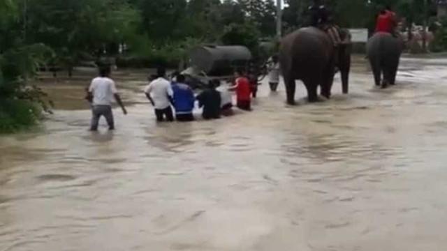 No Nepal, são estes heróis a resgatar turistas das cheias