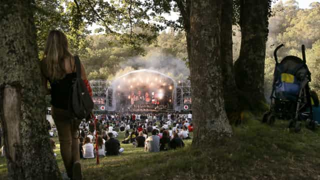 Paredes de Coura começa em pleno com Jungle, Tigerman e Fleet Foxes
