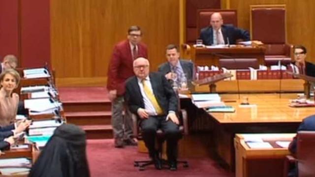 Líder de extrema-direita australiana entra no Senado com burqa vestida