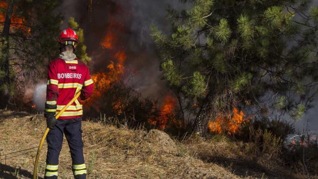 Seis meios aéreos combatem um incêndio em Loulé
