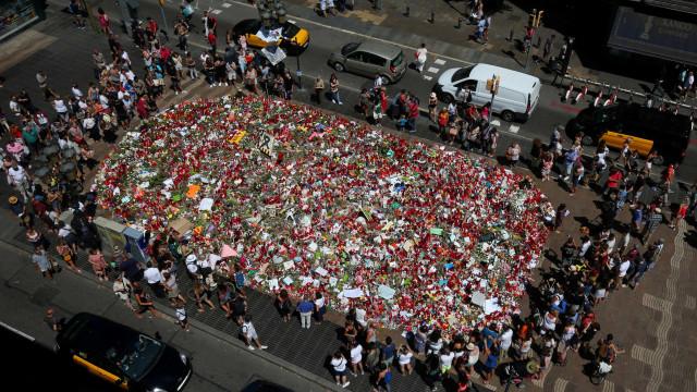 Terroristas poderiam ter produzido entre 100 e 150 quilos de explosivo